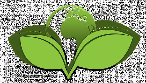 Miljøvenlig webshop og blog - KAEM